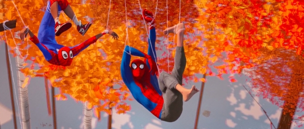 Miles Morales and Spider-Man each tagled in their webs and dangling comedically from trees